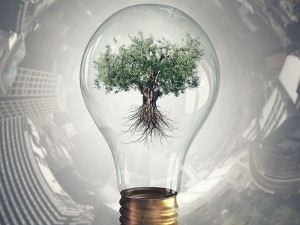 Technology has enabled the world to finally address sustainability in a commercially viable way.
